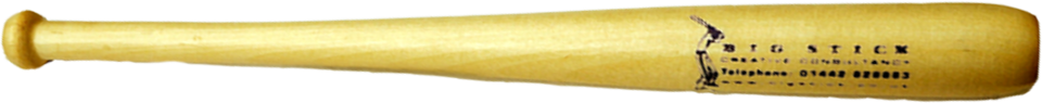 Big Stick Mini Baseball Bat